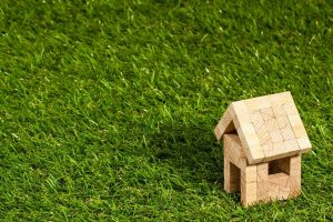 tiny wooden house